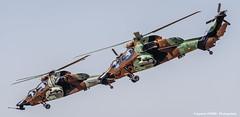 Pair of tigers (Ignacio Ferre) Tags: famet lecv spanisharmy espaa spain military nikon militar ec665 eurocopterec665tigre tigre helicptero helicopter aircraft airplane avin aviation dos pair two