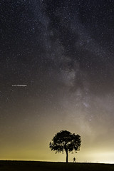 Under my tree (Tekila63) Tags: night nightshot milkyway tree nightscape nuit voielactee arbre silhouette stars