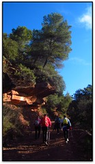 Pujant a can Serra de l'Arca, Aiguafreda (Jess Cano Snchez) Tags: elsenyordelsbertins canon ixus310hs catalunya catalua catalonia espanya espaa spain barcelonaprovincia valles vallesoriental aiguafreda parc parque park natural montseny gebracb senderisme senderismo hiking