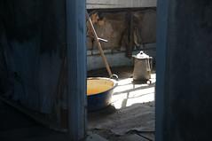 Window Peekin' (nedlugr) Tags: california ca bodie ghosttown coffeepot washbasin shadows windowpeeking door usa ruraldecay ruralwest