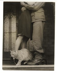 Soldier's goodbye & Bobbie the cat, ca. 1925-ca. 1945, Sam Hood (State Library of New South Wales collection) Tags: statelibraryofnewsouthwales