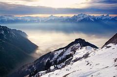 evening (welenna) Tags: alpen alps switzerland schwitzerland sky swiss nebel natur natural mountains mountain mist misty berge view landscape light licht rochersdenaye winter fog