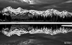 Vermilion Lakes (Tim Harding) Tags: alberta banffnationalpark canada landscape winter