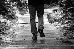 10 Inizio passeggiata (Ciak88) Tags: tofino nikon d5300