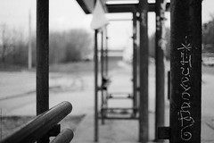 untitled (Anton Zabermach) Tags: nikonfe2 nikkor 50mmf18ai film analog 35mm ilford fp4 bw blackandwhite dof bokeh selfdeveloped microphen