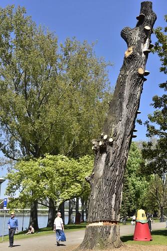 Le tronc sculpté