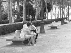 Un ratito de charla con las amigas (Micheo) Tags: granada spain amigas friends banco bench paseodelabomba
