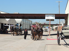 Horse Wagons (Andrew Penney Photography) Tags: statefairofoklahoma fairday okc 405 horses animals farm farmanimals ffa cowboys cowgirls cowpeople fair kidsday thingsisee thingstodo