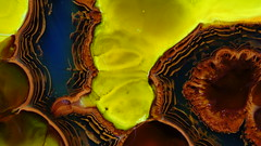 Mars Planet (kelemengabi) Tags: mars planet plasmogenia alfonsol herrera liesegang rings precipitation chemical cymatics kymatik nonnewtonian nonlinear morphogenesis gabrielkelemen nebula