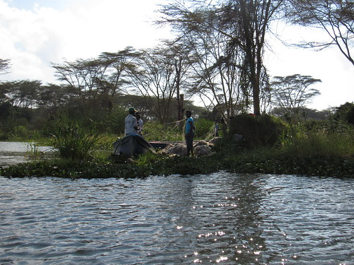 Lake Naivasha - 16 Aug 2016 - 15