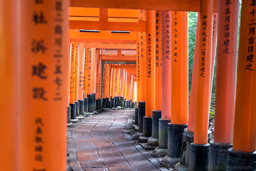 Walking the Torii path across the mountain