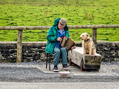 PLAYING A TUNE (PHOTOGRAPHY|bydamanti) Tags: countyclare ireland ie people dog musician cliffsofmoher accordian streetmusician