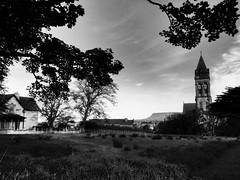 Cathedral, Sligo (David_Blair) Tags: sligo church cathedral republicofireland ireland blackandwhite bw landscape trees park parks nikon nikoncoolpix nikoncoolpixl840 coolpix l840