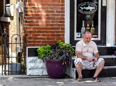 Glued To His Phone (J Wells S) Tags: streetscene urbanstreetscene urban cellphone man bricks steps door covington kentucky cincinnati ohio