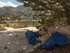 A Dogs Life (RWShea Photography) Tags: backpack johnmuir nickie wilderness