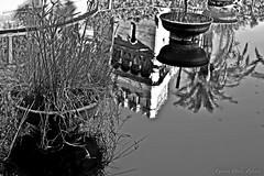 """Reflections On The Lake"" (giannipaoloziliani) Tags: lake blackandwhite reflections monochromatic lago riflessi biancoenero water castle acqua castello nikon nikoncamera photoart shadows lights shapes nikond3200 italy arenzano park parco genova province italia liguria nature ombre dark"