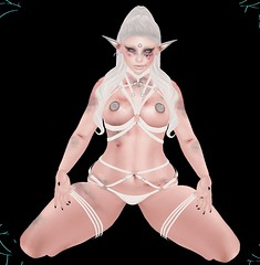Look 72 (Nicolas Baryl) Tags: {twc glamaffair littlebones cerberusxing {chemicalprincess} empire catwa