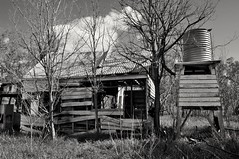 Muddled up (holly hop) Tags: farm ruraldecay rural sheds farmshed derelict abandoned empty australia centralvictoria rusty rustyandcrusty wooden dilapidated ruins farming farmhouse home homestead house monochromemonday bw monochrome