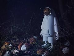 The strange glade… (ikar11) Tags: threea ashleywood popbot bambaboss