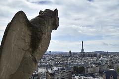 Notre-Dame 8 (CarlosJ.R) Tags: eiffel francia grgola notredame pars torre torreeiffel