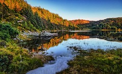 Djupadalen, Norway (Vest der ute) Tags: g7x norway rogaland haugesund waterscape landscape reflections water trees fav25 fav200