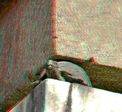 Boboli obelisk Florence 3D (wim hoppenbrouwers) Tags: boboli obelisk florence 3d boboliobelisk florence3d palazza pitti aswan atum anaglyph stereo redcyan egypt granit turtle schildpad bobligarden