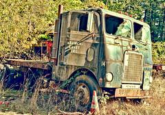 Ashwood Construction Co (creepingvinesimages) Tags: htt truck junk rust outdoors tualatin oregon nikon d7000 pse14 topaz restyle