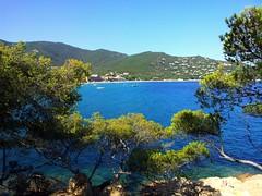 Cavaliere  (Var, France) (frecari) Tags: var france cavaliere t summer 2016 nature sea mer mediterranee