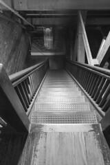 DSC00167 - Casa Loma (Syed HJ) Tags: sonyalpha7r sonya7r sony a7r sonyilce7r ilce7r canonef1635mmf28liiusm canonef1635mmf28lii canonef1635mmf28l canon1635mm 1635mm canon casalomatorontooncanada casaloma toronto ontario canada blackwhite blackandwhite bw stairs