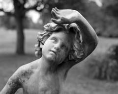 NewVue_101816_02 (Mark Dalzell) Tags: newvue 4x5 view camera film kodak tmax 400 xtol ringwood state park nj fpp cherub statue