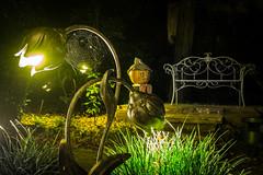 Europa Park Night-photo-tour EP3 (Red-Shadow) Tags: europapark halloween nacht nachtfotogerafie pumpkin light bench