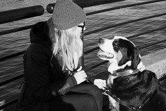 Girl's Best Friend- Miranda Fatur, BCIT Journalism (mirandafbcit) Tags: photojournalism girlsbestfriend puppylove saintbernard coalharbour