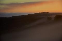 Sunrise and fog (Antonio Cinotti ) Tags: landscape paesaggio toscana tuscany italy italia siena hills colline campagnatoscana cretesenesi asciano nikond7100 nikon d7100 rollinghills nikon1685 sunrise dawn fog foggymorning flockofsheep