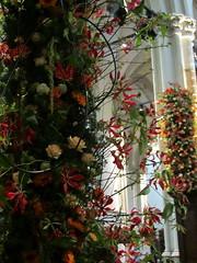 Nieuwe Kerk - Amsterdam (OurPhotoWork) Tags: flowers flower beatrix bloemen maxima coronation troon bloemstuk nieuwekerk koningin koningshuis huisvanoranje bloemstukken inhuldiging kroning koningwillemalexander koninginmaxima