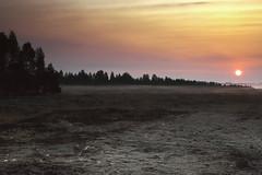 Sonnenaufgang (dbbrg) Tags: sommer moor sonnenaufgang hille 2013 hillermoor