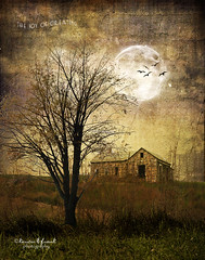 .. the late hour .. (Kerstin Frank art) Tags: moon house tree texture birds latehour magicunicornverybest kerstinfrankart kerstinfranktexture