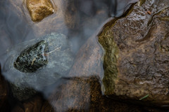 Creek Rock (szapucki) Tags: water river rocks stream natural textures earthtones
