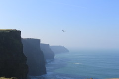 The Cliffs of Moher (Toni Doyle) Tags: ireland beautifulireland coclare clare cliffs cliffsofmoher