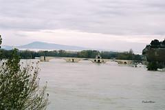 Avignon (mduthet) Tags: avignon vaucluse ledelabarthelasse inindations