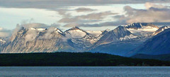 Atlin lake (xtremepeaks) Tags: juneau icecap atlin lake glacier mountains snow glaciers bc canada north clouds landscape water forest nature outdoors peaceful