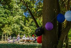 2016-08-14  Les cornichons (Nino Ferrer) (Robert - Photo du Jour) Tags: aout 2016 aufildutemps lescornichons ninoferrer parcfloral piquenique famille ballons anniversaire vert gateau