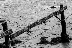 Wire in mud (Mike*T*) Tags: suffolk wreck boat mud coast fishing orford barbed wire bw black white