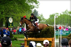 Rolex12 (NRJWphotography) Tags: crosscountry horse rolex rolex2016 bayhorse brownhorse jumping lexington kentucky horsephotography equestrian