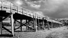 Old road bridge Gundagai (laurie.g.w) Tags: old road bridge gundagai nsw country river flood plain timber bw blackandwhite sky
