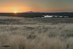 Sunset... (rafagomezz) Tags: atardecer orange sunset sun puestadesol landscape paisaje nationalpark parquenacional wetlands humedales humedal nikon