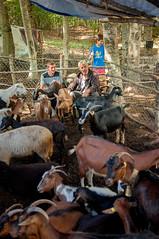 ZOKA Albanie 2015_35_DennisWansink (Dennis Wansink) Tags: zoogdiervereniging vzz zomerkamp veldwerkgroep albanië albania shebenikjabllanica park reservaat fushëstudë librazhd al