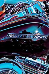 Tank Harley Davidson Motorbike (eagle1effi) Tags: vinci art eagle1effi bike motorbike harley davidson motrorrad kunst