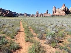Chesler Park, The Needles, Canyonlands (travelourplanet.com) Tags: canyonlands canyonlandsnationalpark utah theneedles cheslerpark