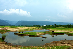 (Sajeeb75) Tags: landscape outdoor reflection green cow water sky hill blue bangladesh