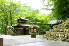 Otagi Nenbutsuji temple (T.Machi) Tags: temple green maple kyoto japan statue fujifilm xf1